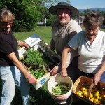 Clay County Master Gardeners