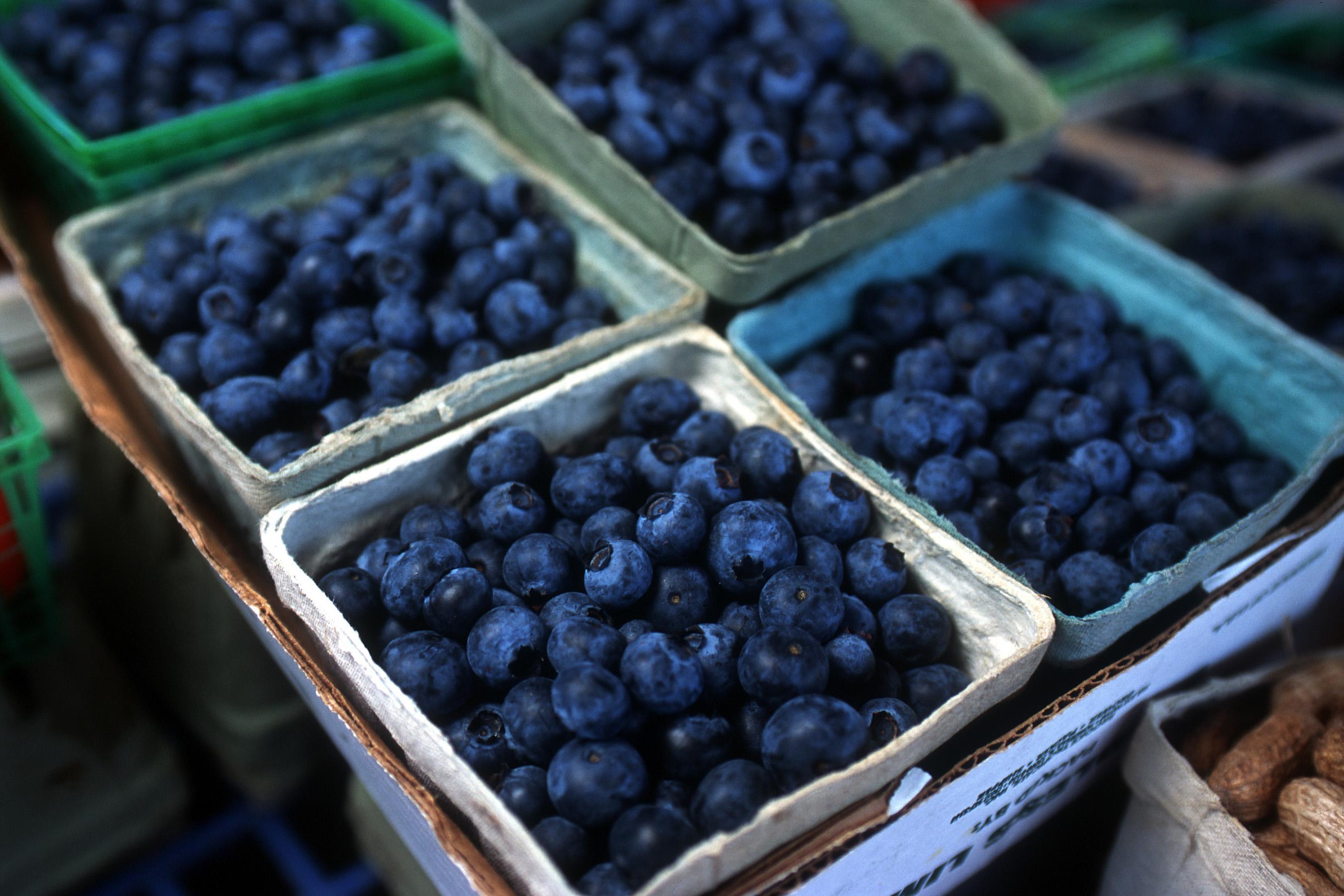 OBJ.blueberries