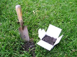 Image of a soil test kit