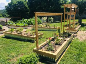 Cover photo for Clay County Raised Bed Basics Cancelled