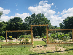 Cover photo for 2020 Extension Master Gardener Program of Clay County, March 5 Postponed