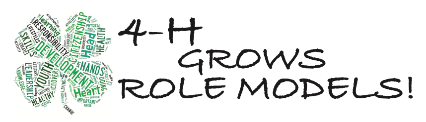4-H Grows Role Models