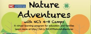 Cover photo for Don't Miss Out on Nature Adventures with NC 4-H Camps