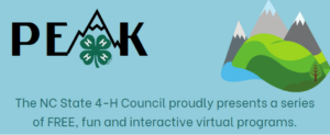Cover photo for Have Fun With 4-H PEAK  Virtual Program