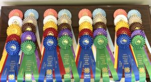 Cover photo for 2021 NC State 4-H Virtual Horsebowl Challenge Results
